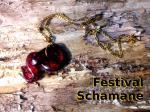 Der Festival Schamane